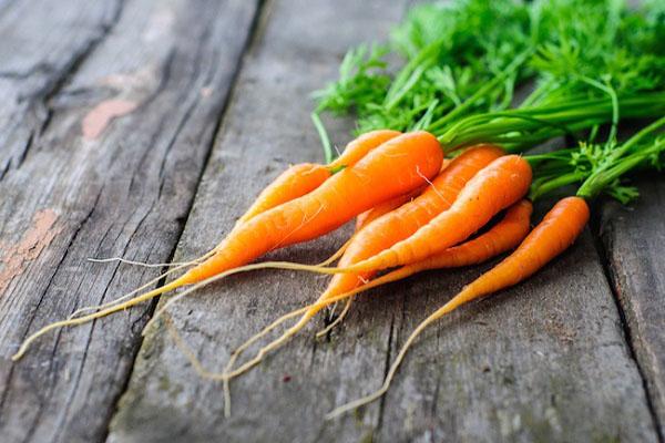 حلوای هویج - آموزش حلوای هویج